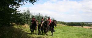 naturridning, riderute