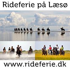 banner-rideferiedk