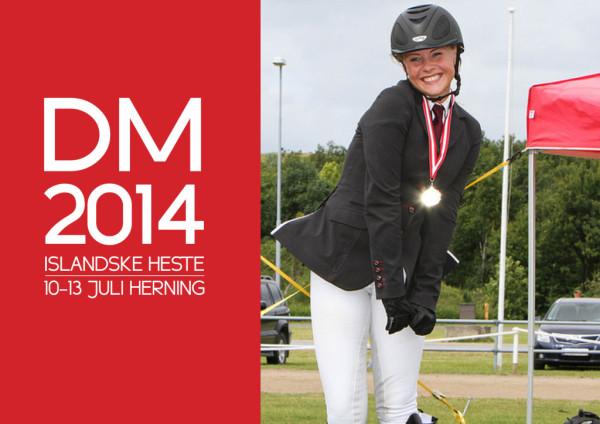 DM-2013-Foto-1024x723