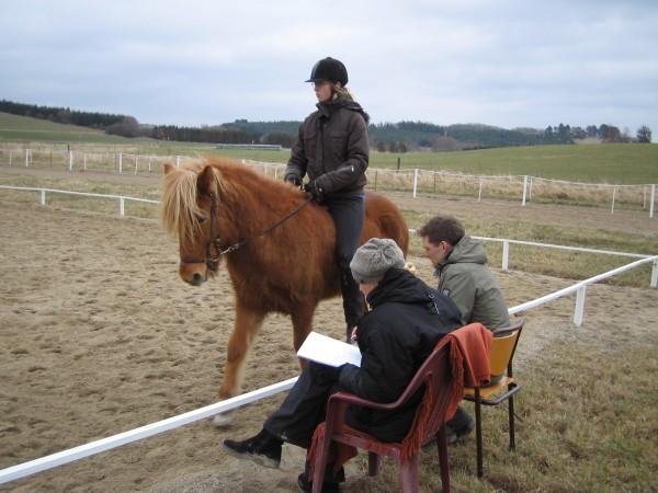 kursusdeltager til hest