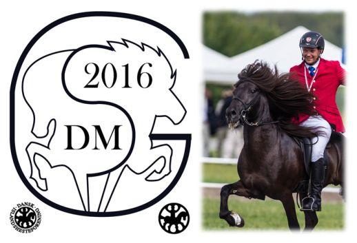 dm2016-logo-og-billede